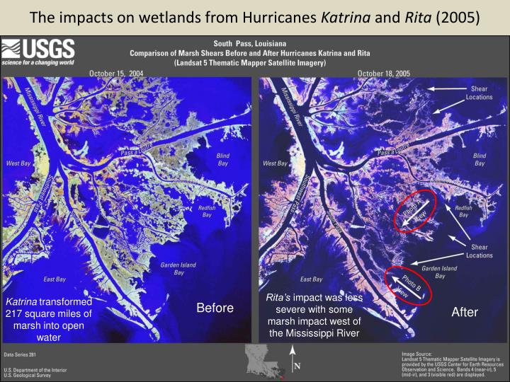 The impacts on wetlands from Hurricanes