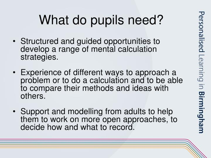 What do pupils need?