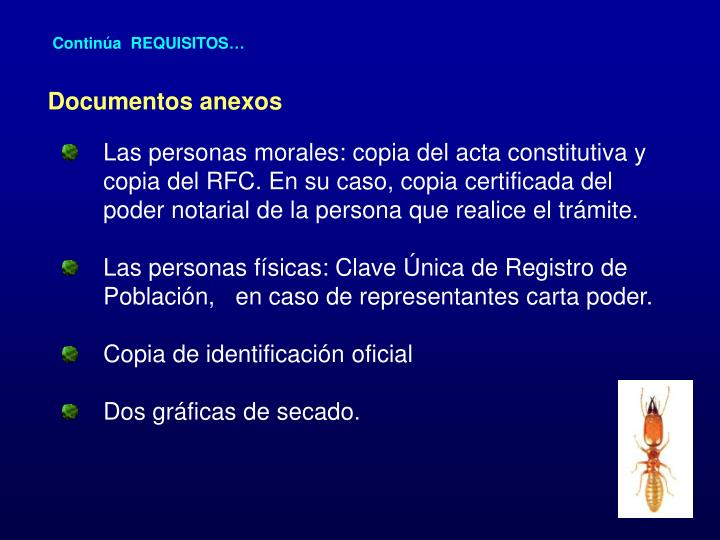 Continúa  REQUISITOS…
