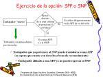 ejercicio de la opci n spp o snp