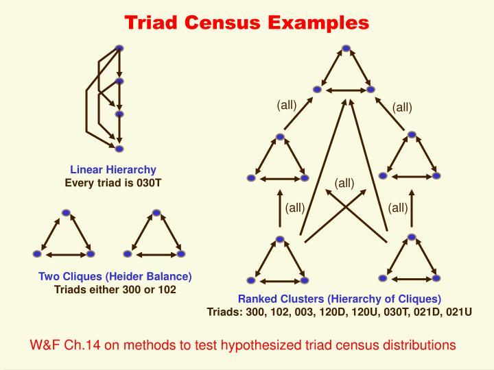Triad Census Examples