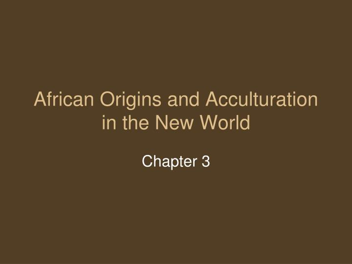 African origins and acculturation in the new world