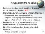 aswan dam the negatives
