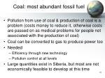 coal most abundant fossil fuel