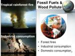 fossil fuels wood pollute