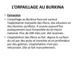 l orpaillage au burkina1