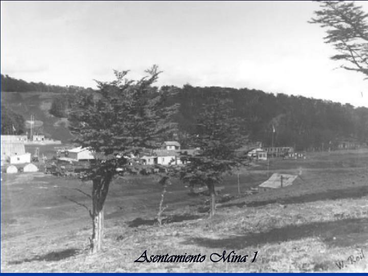 Asentamiento Mina 1