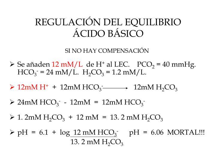 REGULACIÓN DEL EQUILIBRIO ÁCIDO BÁSICO