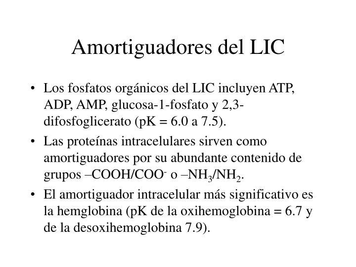 Amortiguadores del LIC
