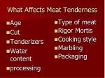 what affects meat tenderness