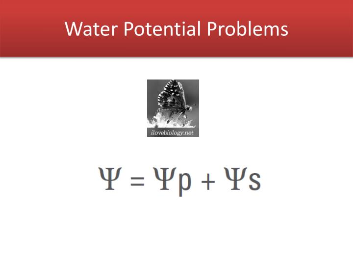 ap biology water potential notes The water potential of pure water in an open container is zero because there is no solute and the pressure in the container is zero adding solute lowers the water potential when a solution is enclosed by a rigid cell wall, the movement of water into the cell will exert pressure on the cell wall.