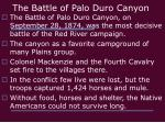 the battle of palo duro canyon