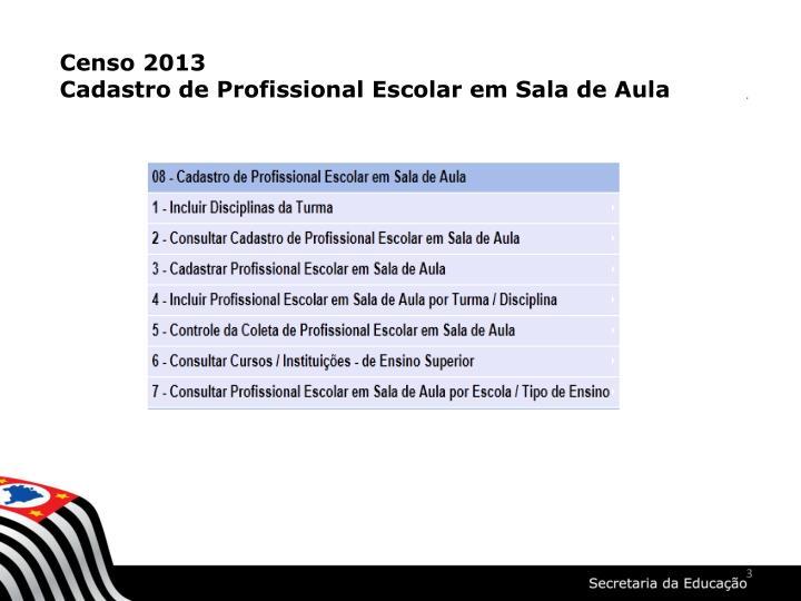 Censo 2013