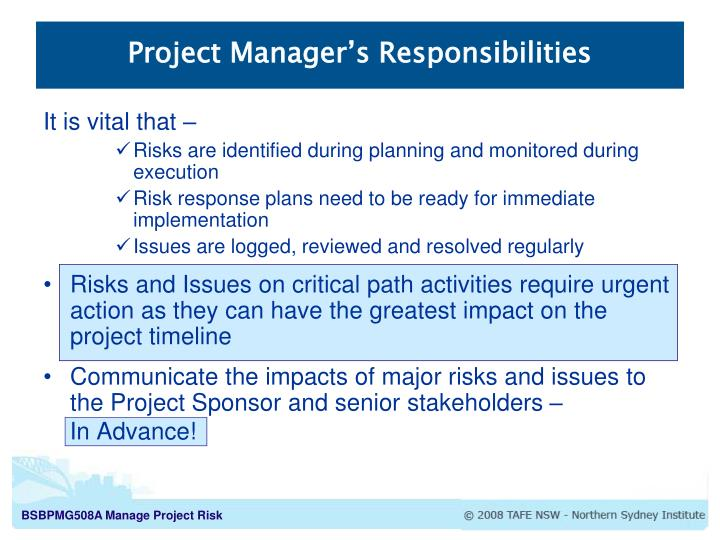 Project Manager's Responsibilities