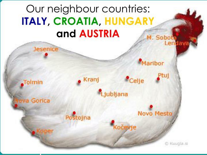 Our neighbour countries italy croatia hungary and austria