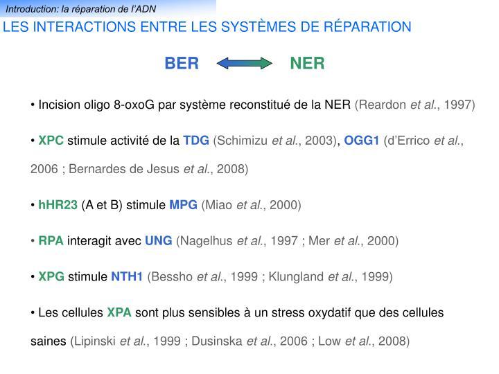 Introduction: la réparation de l'ADN