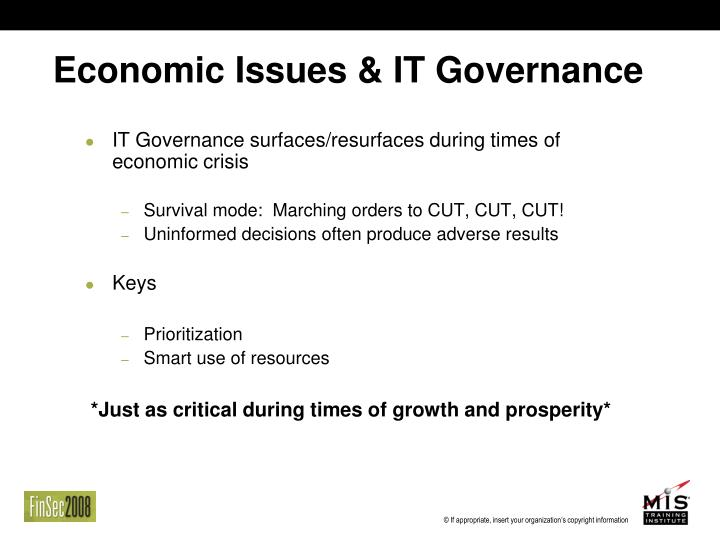 Economic Issues & IT Governance