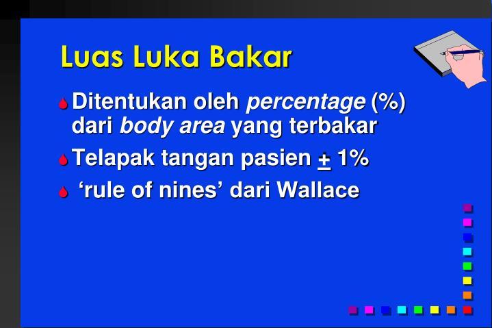 Luas Luka Bakar