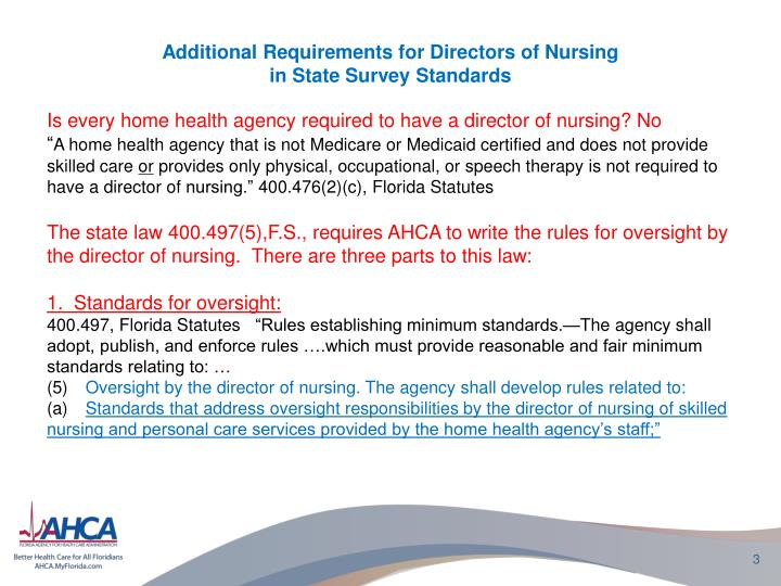 Additional requirements for directors of nursing in state survey s tandards