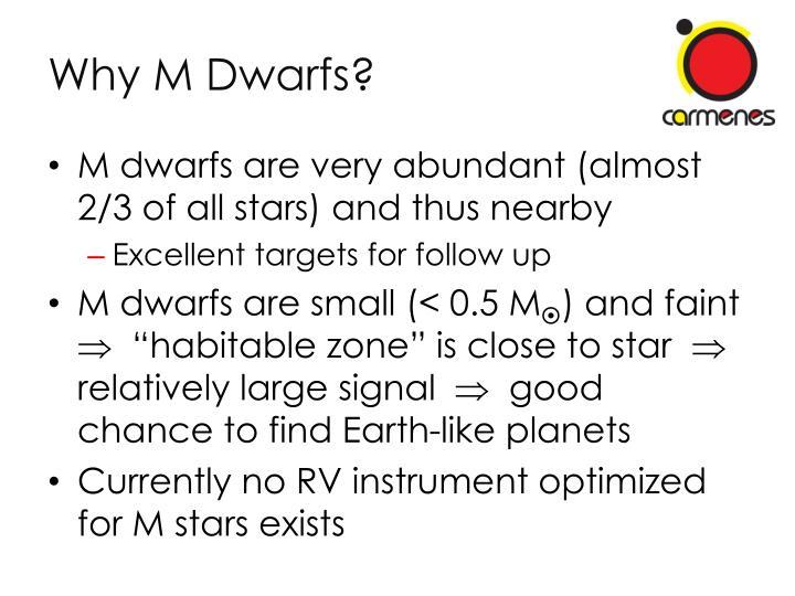Why M Dwarfs?