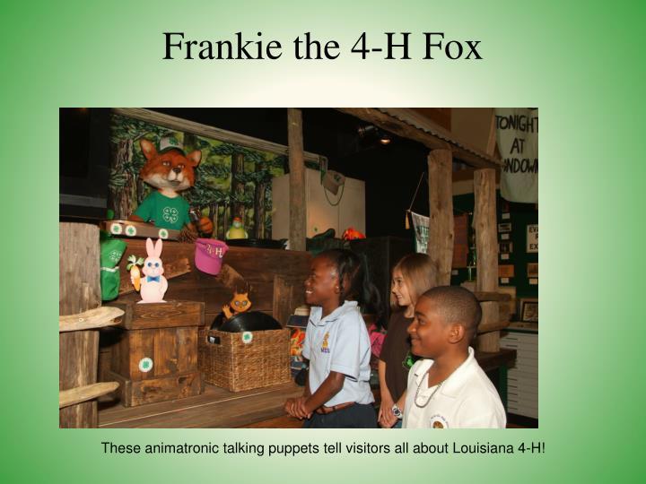 Frankie the 4-H Fox