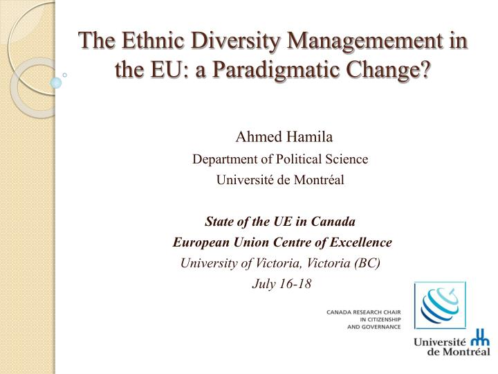 the ethnic diversity managemement in the eu a paradigmatic change n.