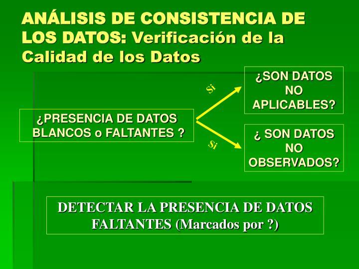 ANÁLISIS DE CONSISTENCIA DE LOS DATOS: