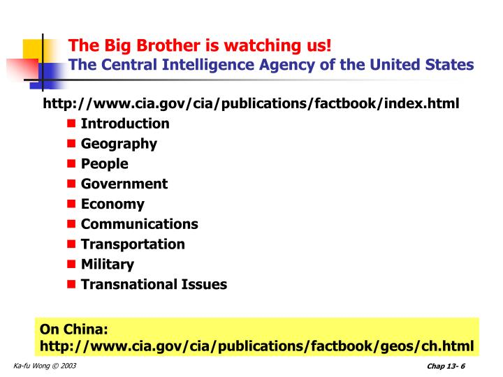 The Big Brother is watching us!