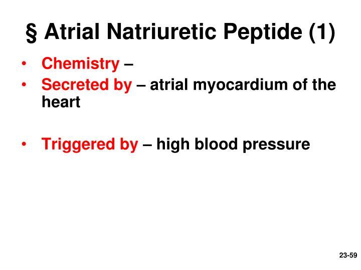 § Atrial Natriuretic Peptide (1)