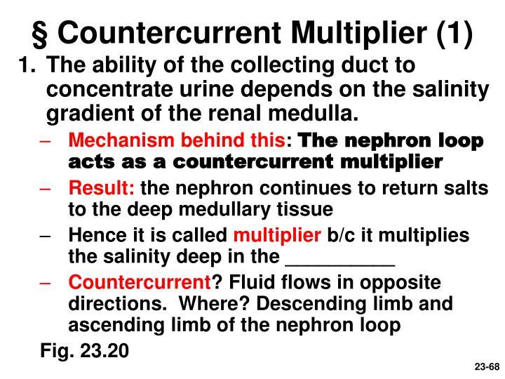 § Countercurrent Multiplier (1)