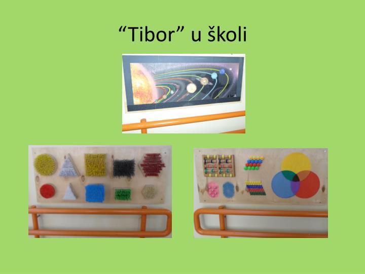 """""""Tibor"""" u školi"""