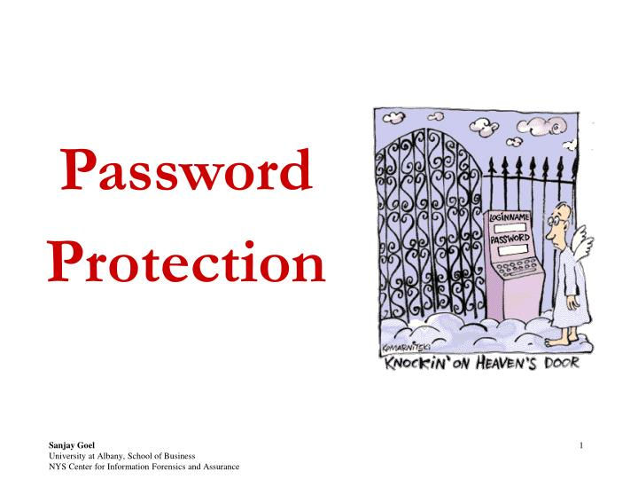 password protection n.