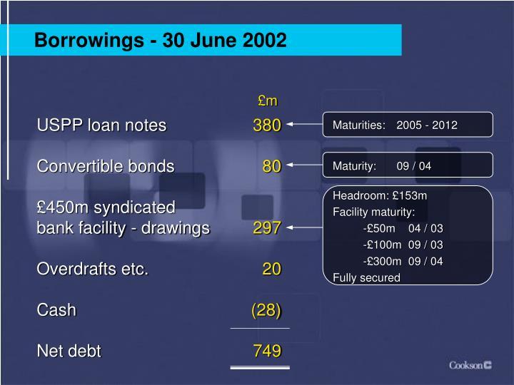 Borrowings - 30 June 2002