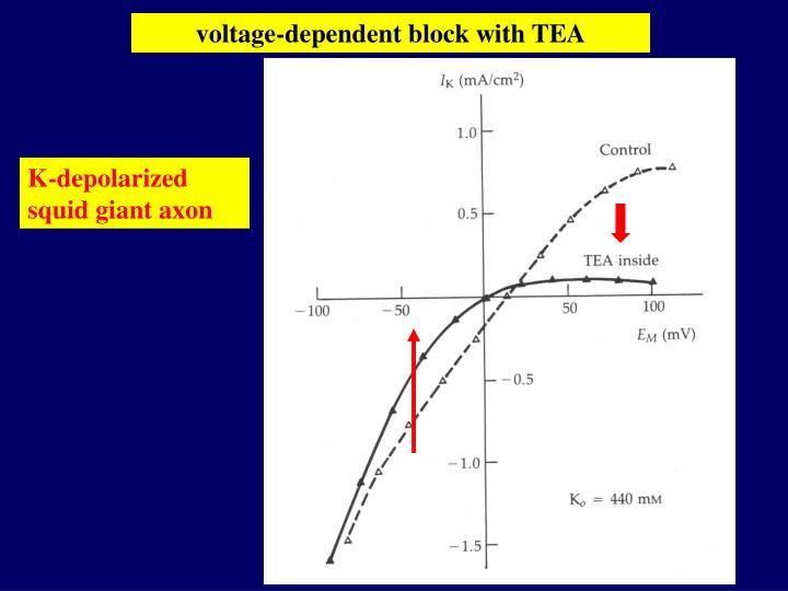 voltage-dependent block with TEA