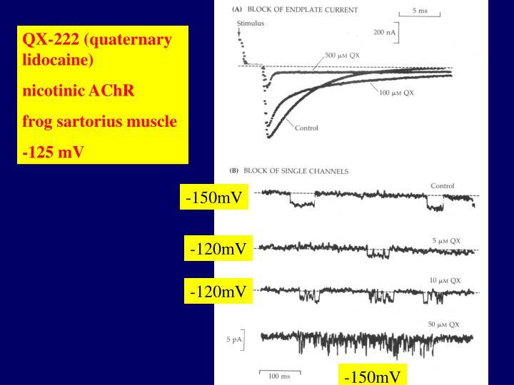 QX-222 (quaternary lidocaine)
