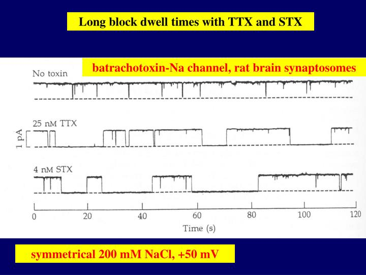 Long block dwell times with TTX and STX
