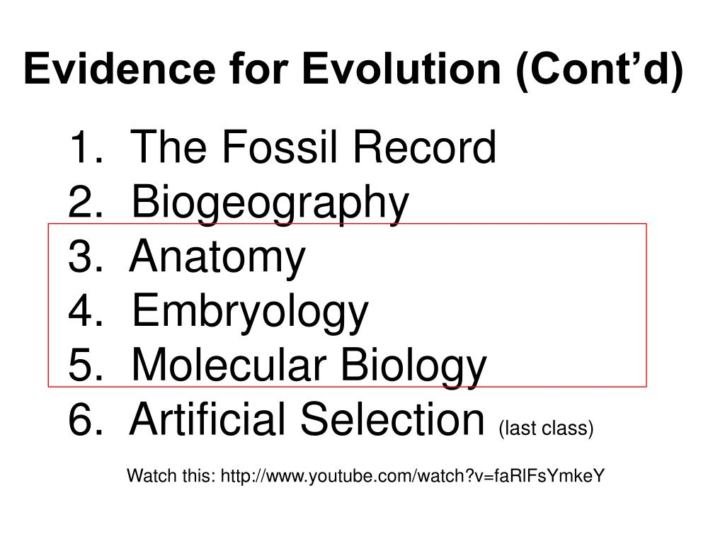 Ppt Evidence For Evolution Contd Powerpoint Presentation Id