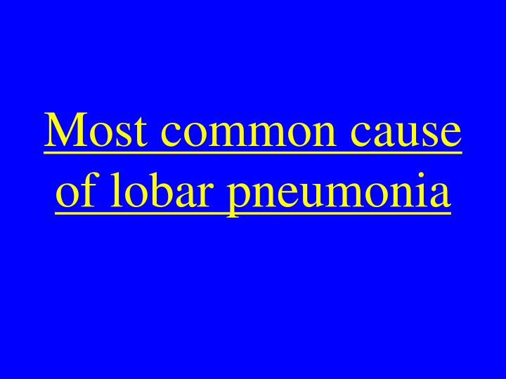 Most common cause of lobar pneumonia
