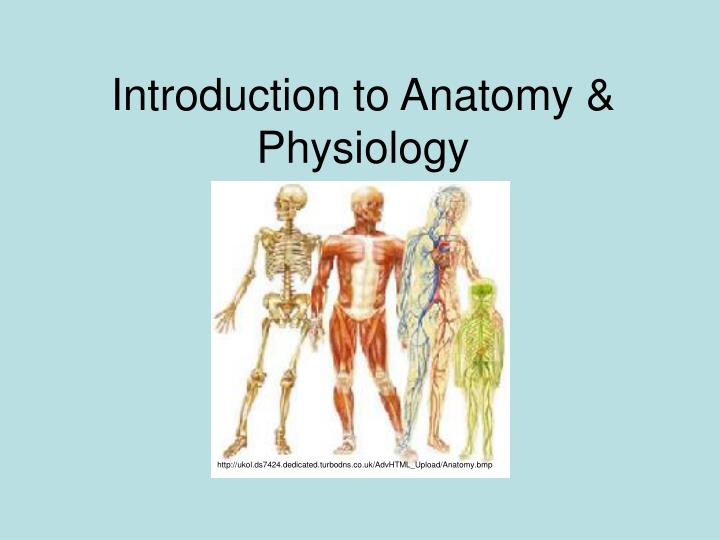 Colorful Introduction To Anatomy And Physiology Ppt Vignette ...