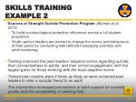 skills training example 2