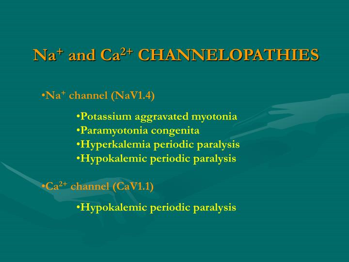 Na and ca 2 channelopathies