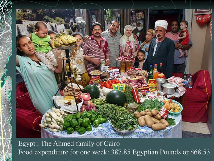 Egypt : The Ahmed family of Cairo