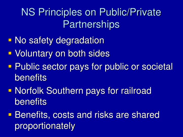 NS Principles on Public/Private Partnerships