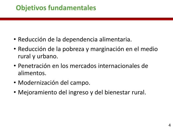 Objetivos fundamentales