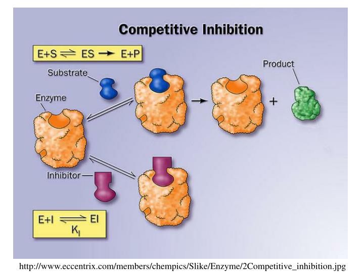 http://www.eccentrix.com/members/chempics/Slike/Enzyme/2Competitive_inhibition.jpg