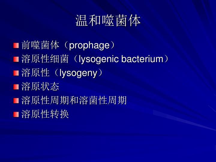 温和噬菌体