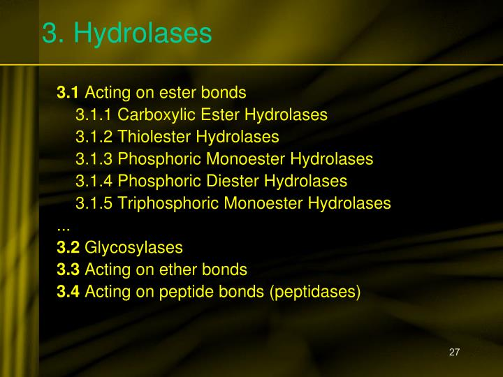 3. Hydrolases