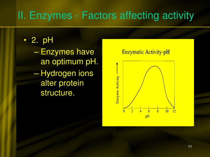 II. Enzymes - Factors affecting activity