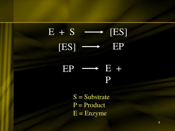 E  +  S