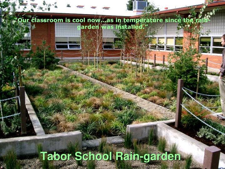 Tabor School Rain-garden